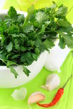Green parsley in a mortar with garlic and pepper Stock Image