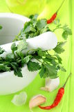 Green parsley in a mortar with garlic and pepper Royalty Free Stock Photo