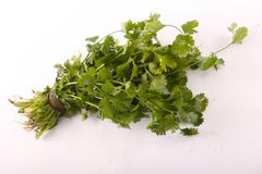 Green Parsley Pack. On white background Stock Photo
