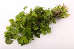 Green Parsley Pack. On white background Royalty Free Stock Photos