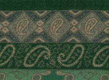 Green pashmina shawl Stock Image
