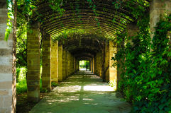Green passage in Athens, Greece. View of green passage in Athens, Greece Stock Photography