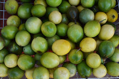Green  Passionfruit Stock Images