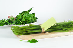 Green pasta and its natural vegetable dye spinach with card Stock Photography