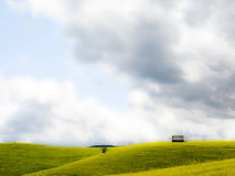 Green pasture. On a hill royalty free stock photography