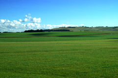 Green Pasture in England. Green pasture of lush green grass with blue sky and clouds in Amesbury, England Stock Photography