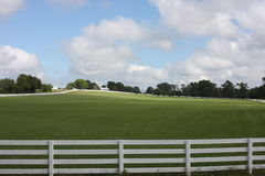 Green Pasture. This fence and meadow are in Coke Texas. Such a great view to be there Stock Photos