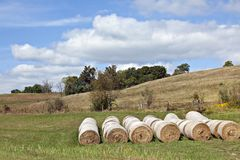 Green pasture with hay bales Royalty Free Stock Photos