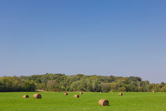 Green Pasture with Haystacks Royalty Free Stock Images