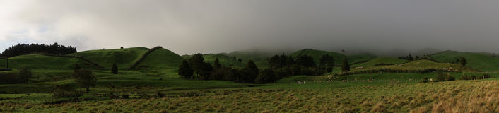 Green pasture on hillside. Panorama of green pasture with morning fog Royalty Free Stock Photography
