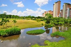 Green pasture with a river at Bishan Park. With some public apartments in the background royalty free stock photo