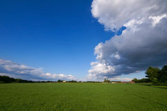 Green pasture and thunder. Green pasture with big thundercloud overcast Royalty Free Stock Image