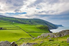 Antrim Coast, Ireland. Green pastures along the coast in County Antrim, Ireland near Kenmare royalty free stock images