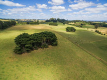 Green pastures of Australian countryside - aerial landscape. Stock Photos
