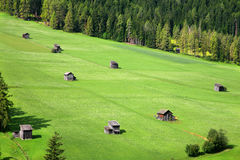 Green pastures - Sexten - Italy Royalty Free Stock Images