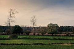 Flemish landscape. Green pastures and trees on the Flemish countryside in the fall. Kortenaken, Flanders, Belgium, Europe Royalty Free Stock Photo
