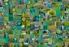 GREEN patchwork photomontage background Stock Photo