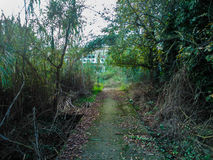 Green path. In Corfu Greece Royalty Free Stock Images