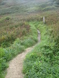 Green Path, The Lizard, Cornwall UK Royalty Free Stock Images