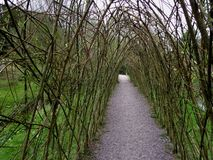 Green Path. Rock Close Ireland Royalty Free Stock Images