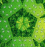 A green pattern Stock Images