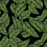 Green, Pattern, Leaf, Design stock image