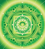 Green pattern, mandala of anahata chakra Stock Images