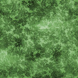 Green Patterned Abstract Royalty Free Stock Photo