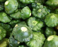 Green patty pan squash, Cucurbita pepo Stock Photos