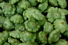 Green patty pan squash, Cucurbita pepo Stock Images