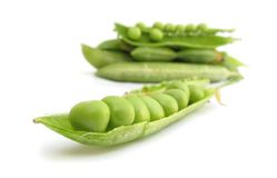 Green Pea Royalty Free Stock Image