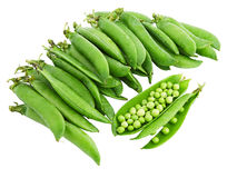 Green pea. Stock Photography