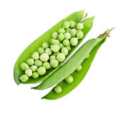 Green pea. Stock Photos
