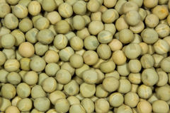 Green pea Stock Image