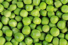 Green pea background Royalty Free Stock Image