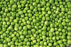 Green pea background Stock Photos