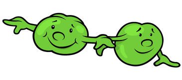 Green Pea Beans Royalty Free Stock Photos