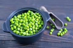 Green pea stock photos