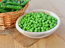 Green pea crops Royalty Free Stock Photo