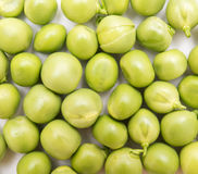 Green pea Stock Photography