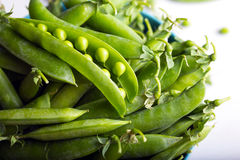 Green pea Royalty Free Stock Photo