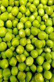 Green pea pile. Camera shot on green pea pile Stock Photography