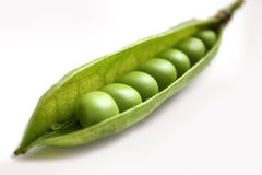 Green pea in a pod. Royalty Free Stock Image