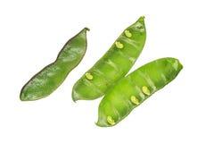 Green Pea Pod Royalty Free Stock Photo