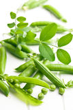 Green pea pod on white table Stock Photography