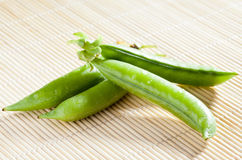 Green pea pods Stock Images