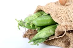 Green pea pods. Beautiful shot of green pea pods on white background Stock Photo