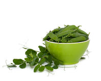 Green pea pods in a bowl Stock Photography