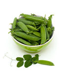 Green pea pods in a bowl Stock Photos