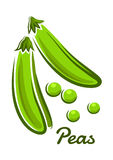 Green pea pods in cartoon style Stock Photo